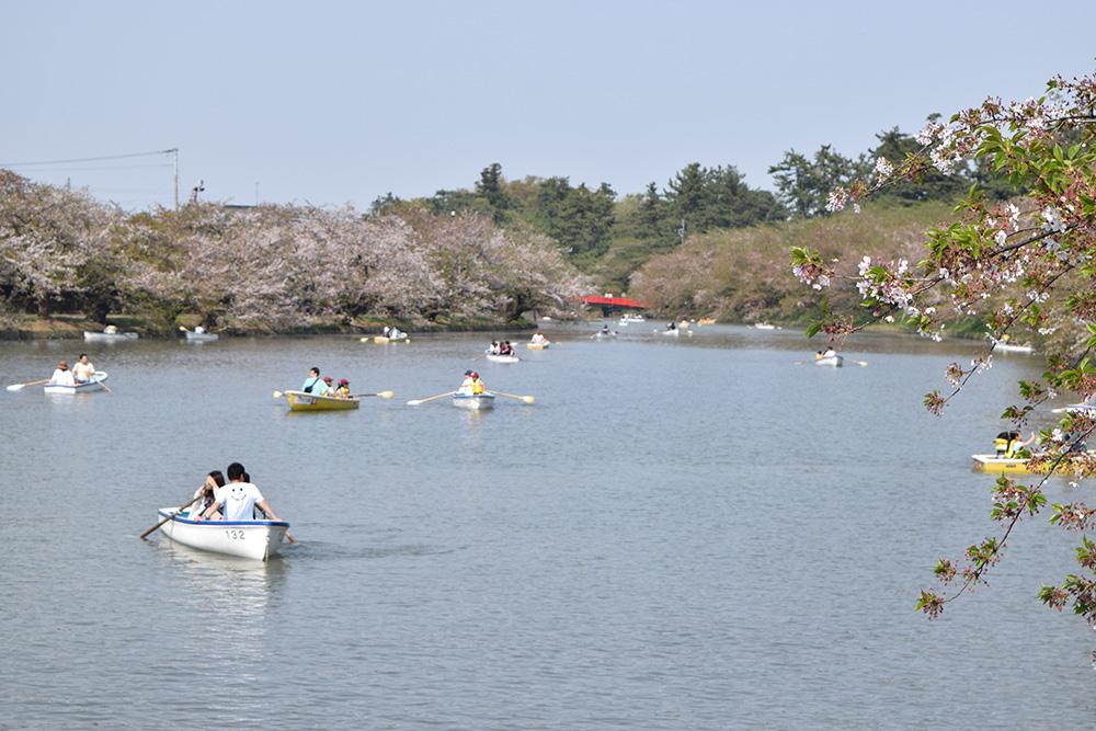 ひろさき桜まつり ボート