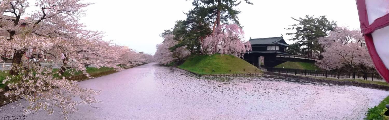 弘前公園・外濠、追手門付近
