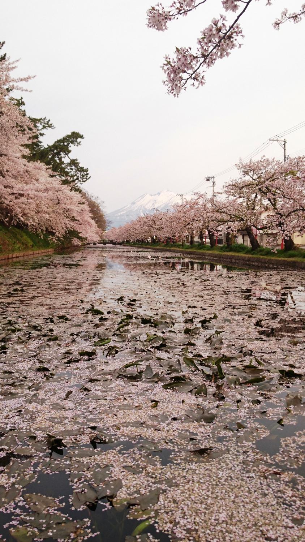 津軽藩ねぷた村前 交差点付近