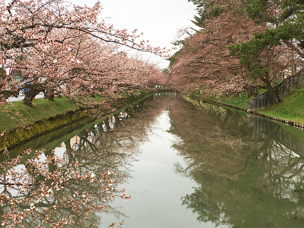 弘前公園・追手門口の外濠