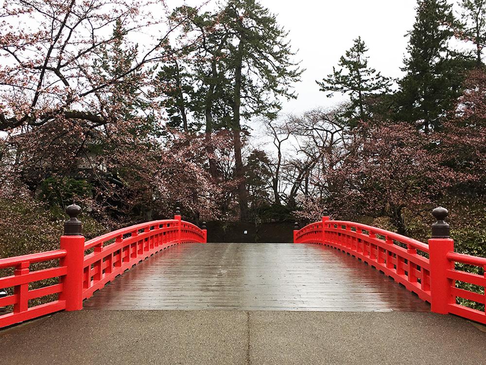 弘前公園・南追手門付近の様子