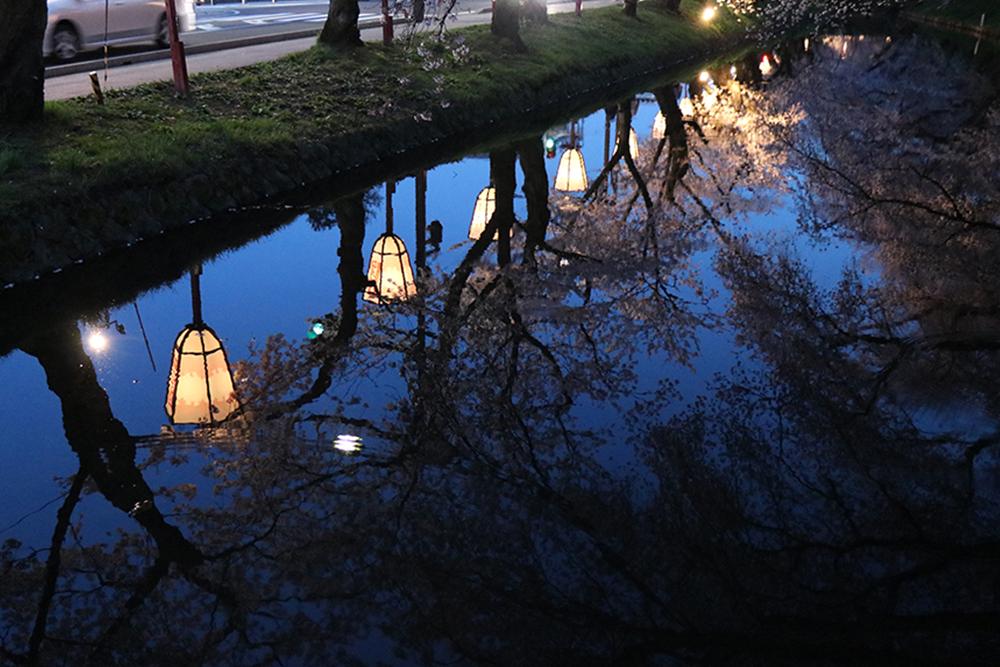 ローソン弘前公園前店付近の花筏スポット