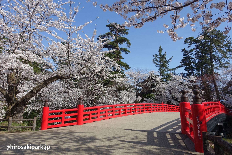 弘前公園 杉の大橋付近