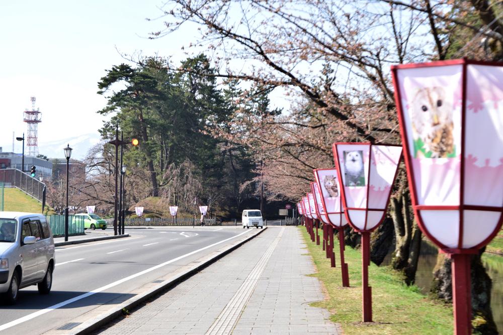 弘前公園・東門付近の様子