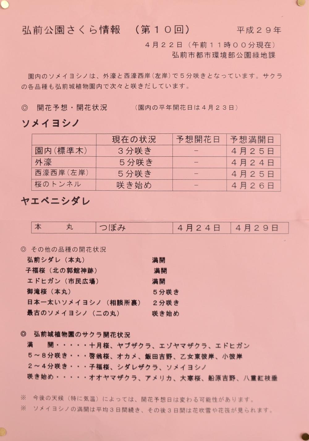 弘前公園のさくら情報 開花予想・開花状況