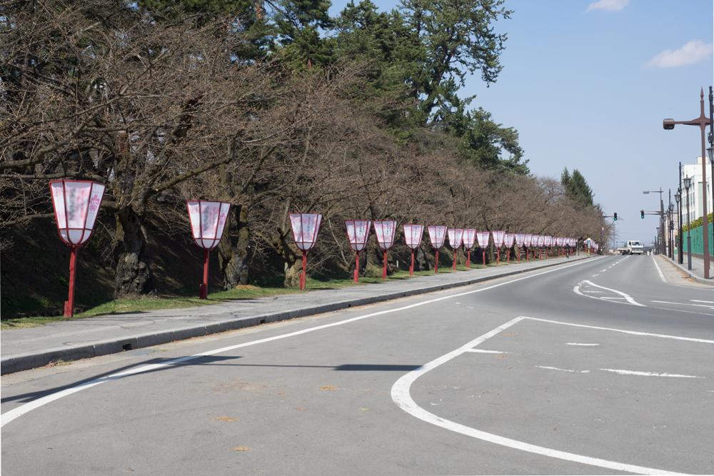 弘前公園 ぼんぼり