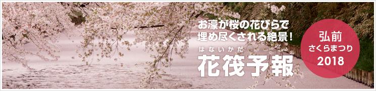 弘前公園 花筏予報