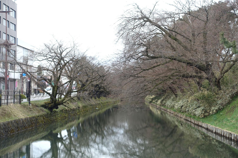 弘前公園 外濠の様子(2018年4月9日 撮影)