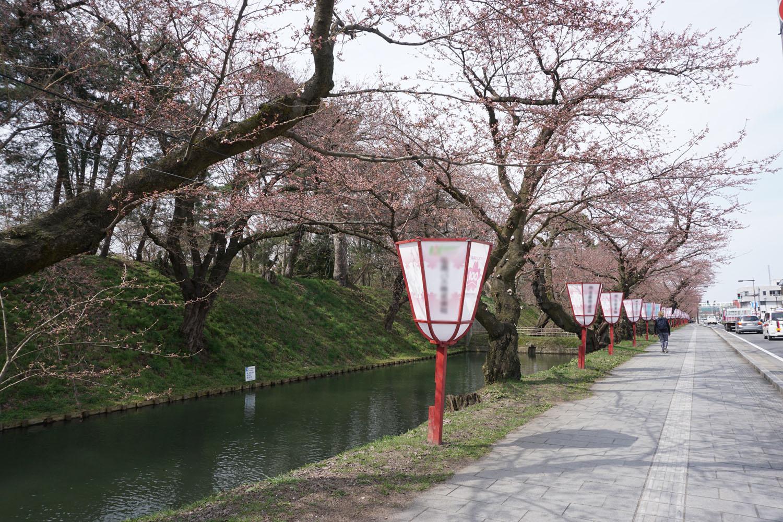弘前公園 (2018年4月19日 撮影)