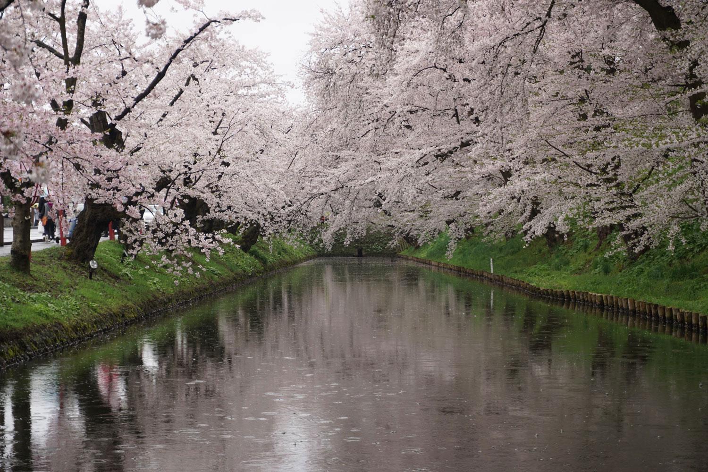 弘前公園 (2018年4月24日 撮影)