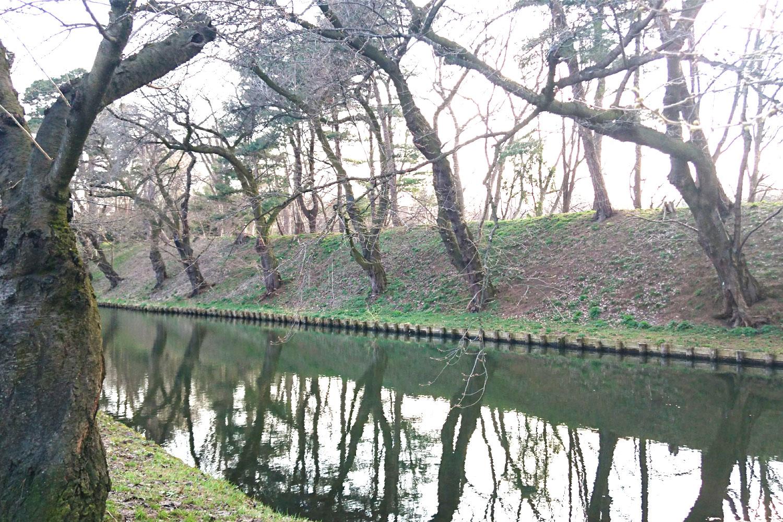 弘前公園 外濠の様子(2018年4月2日 撮影)