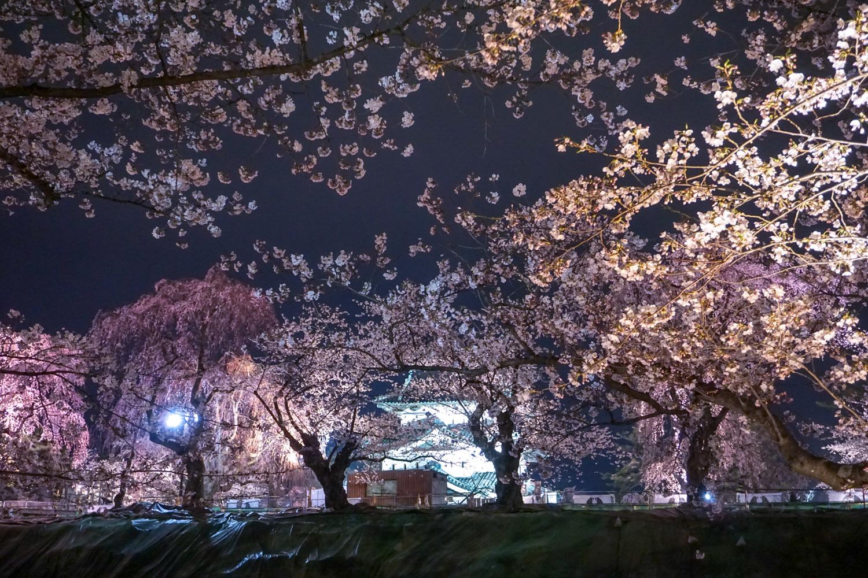 弘前公園 弘前城 ライトアップ