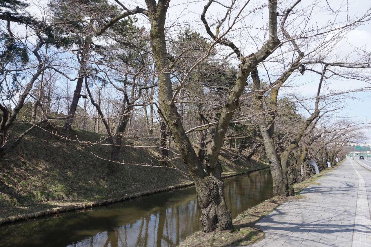 弘前公園 外濠