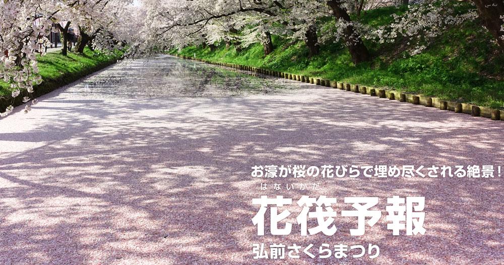 弘前公園 花筏(はないかだ)予報 2020