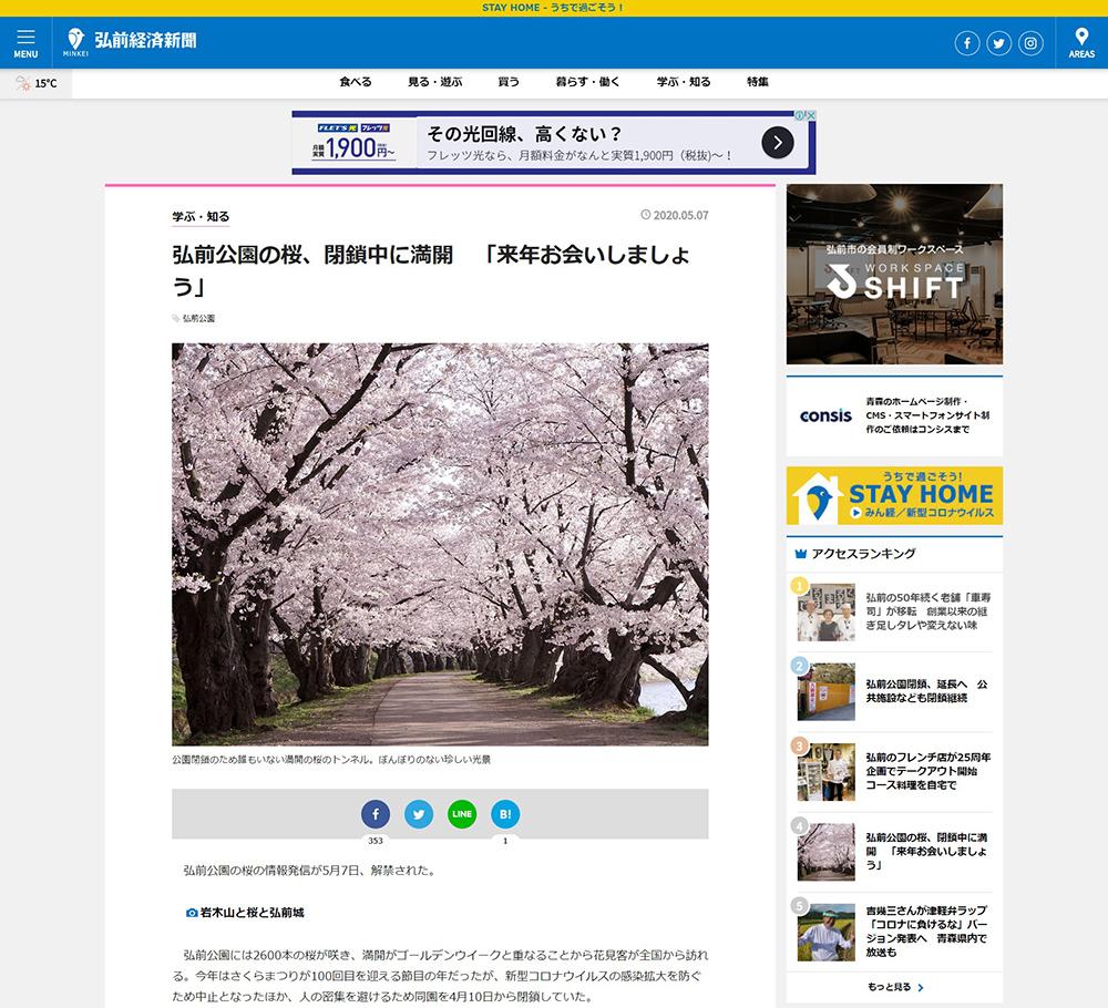 弘前公園の桜、閉鎖中に満開 「来年お会いしましょう」