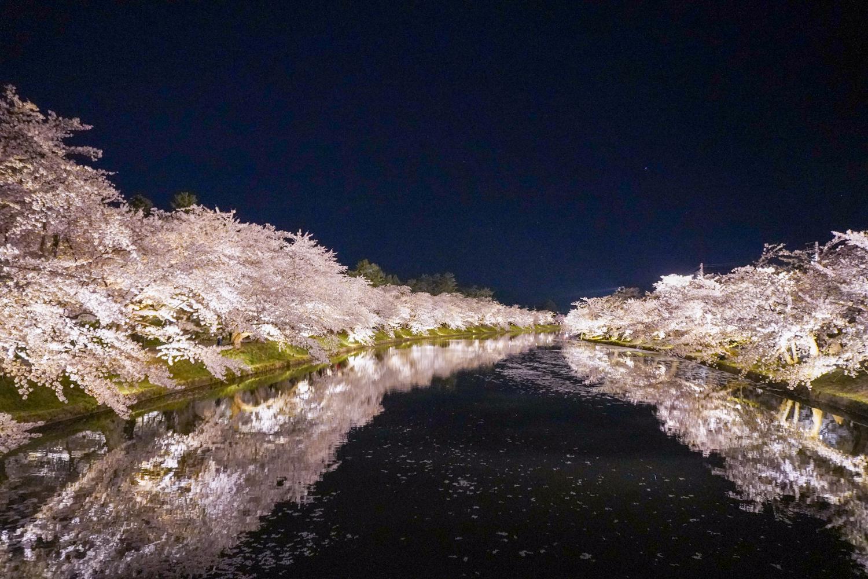 2021年弘前さくらまつり 夜桜の様子
