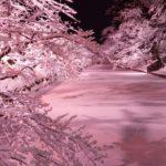 年末年始休業のお知らせ【弘前公園総合情報・弘前さくらまつりサイト】