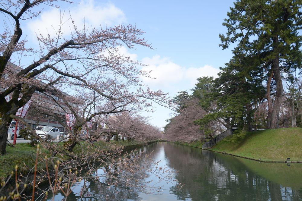 弘前公園・外堀の様子