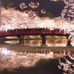 弘前公園 西濠 夜桜 春陽橋
