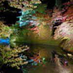 2019年秋の弘前公園「紅葉特別ライトアップ」は11月17日まで!