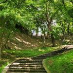 弘前公園 夏